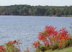 Ross Barnett Reservoir with Sumac in Fall colors on the bank.