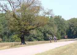 Cyclists biking just south of Collinwood, TN around milepost 349.
