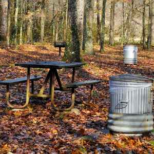 Cypress Creek Picnic Area - Natchez Trace Parkway