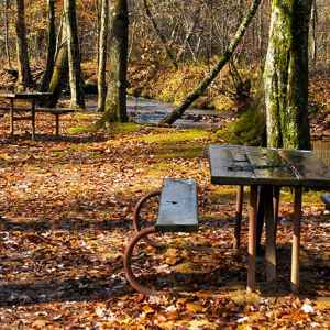 Holly Picnic Area - Natchez Trace Parkway