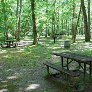 Jacks Branch Picnic Area - Natchez Trace Parkway