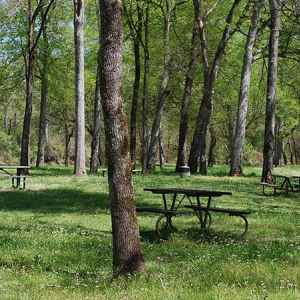 Bear Creek Picnic Area - Natchez Trace Parkway