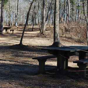 Holly Hill Picnic Area