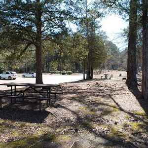 Kosciusko Information Center Picnic Area - Natchez Trace Parkway