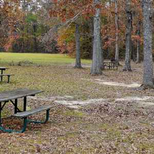 Tennessee-Tombigbee Waterway Picnic Area - Natchez Trace Parkway