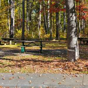 Witch Dance Picnic Area - Natchez Trace Parkway