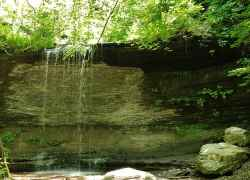 Fall Hollow Waterfall - Natchez Trace Parkway